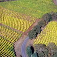 willamette valley vineyard aerial view to illustrate moving company forest grove oregon